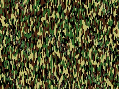 camouflage style pattern