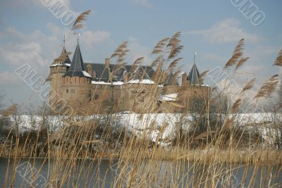 A line of reed partly hiding a snowcovered castle