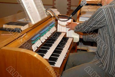 musical organs