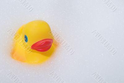 Rubber Duck in a Bubble Bath