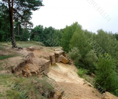 August Landscape with stones and pine forest