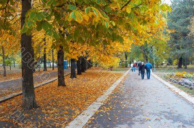 autumn park avenue