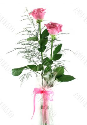 Gift Roses 1