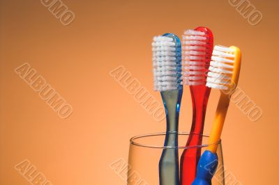 A Family`s Toothbrushes
