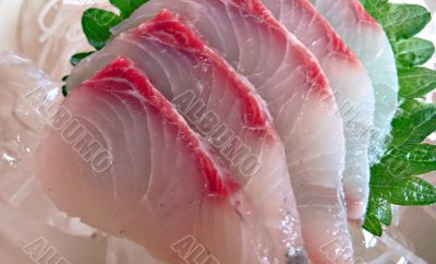 japanese raw fish sashimi