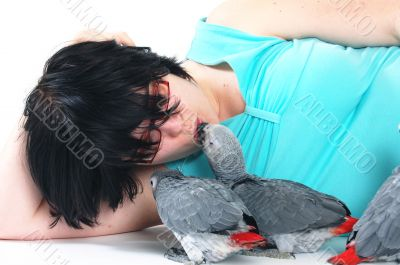 red tale parrot isolated on white kissing with female
