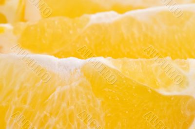 orange segment macro