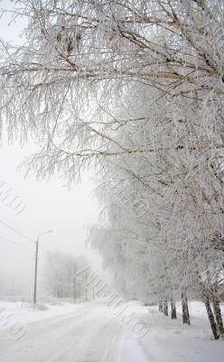 Winter city landscape .