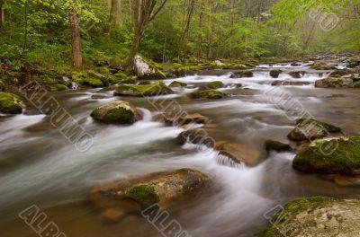 Spring Big Creek