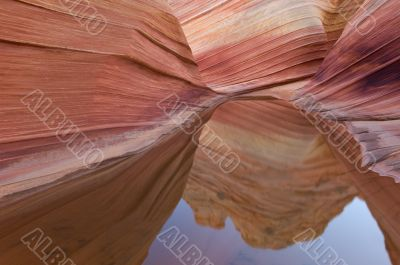 Rain Pool Coyote Buttes