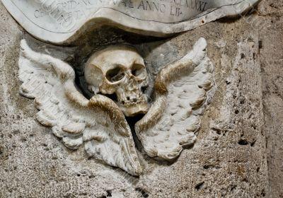 Detail in Sante Maria del Popolo
