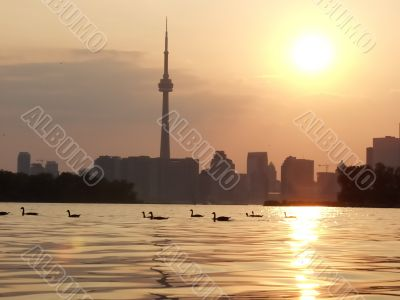 Sunset Lake view of downtown Toronto