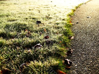 Path of Frost and Light