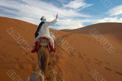 caravan of tourists in desert