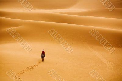marching to desert