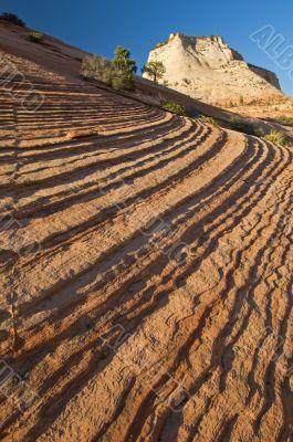 Landscape Zion National Park