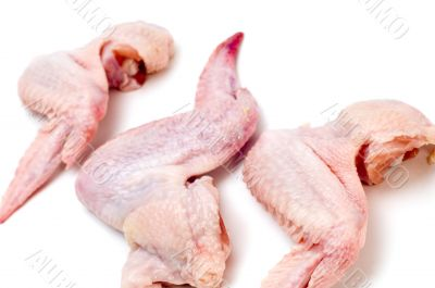 chicken wing close up