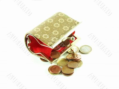 Female purse with coins