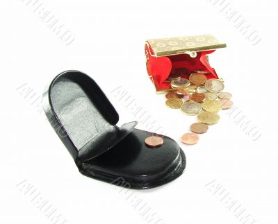 Man`s and female purse with coins
