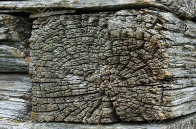 Timber butt of old wooden church wall