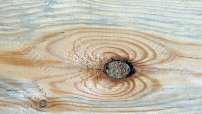 Knot on textured wooden plank