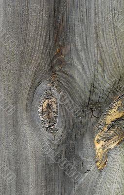 Knots on textured wooden plank like alien face