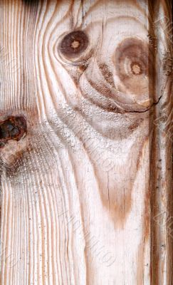 Knots on textured wooden plank like alien face