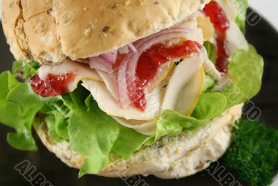 Turkey And Lettuce Roll 6