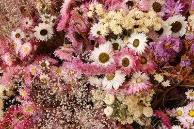 Dried flowers decoration