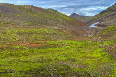 Lush green valley in Iceland
