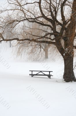 Picnic table in snow under a tree