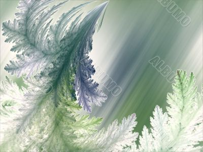 Fractal Abstract Background - Feathery textures