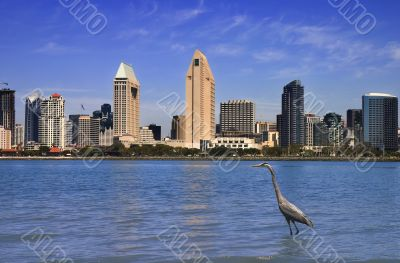 San Diego day skyline