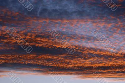 rosy sky