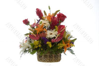 Exotic flowers arrangment -4