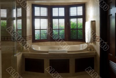 Luxurious Bath with window view