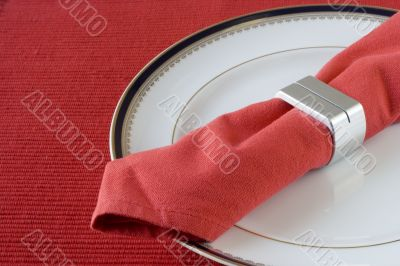 napkin on the plate