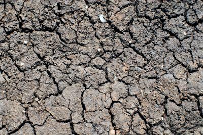 The dry ground