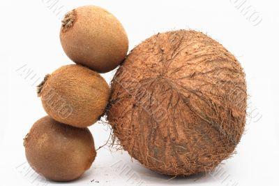 3 kiwi like coco