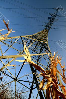stream mast