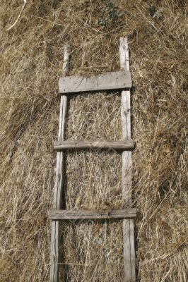 stairway and hay