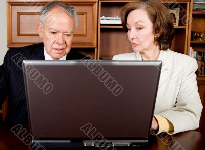 business senior couple on a laptop