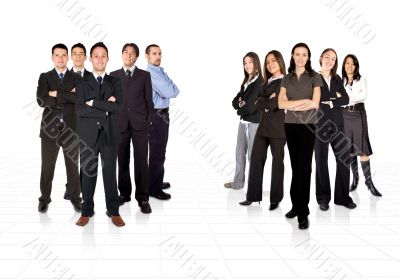 Business teams divided by men and women