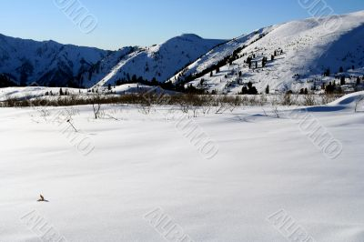 Altai Mountain with snow in winter