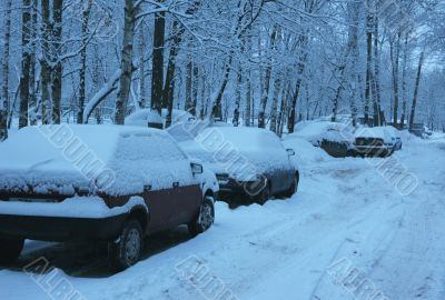 Snow covered cars parked along the road