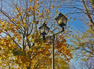 Street lantern against autumn leafs and blue sky
