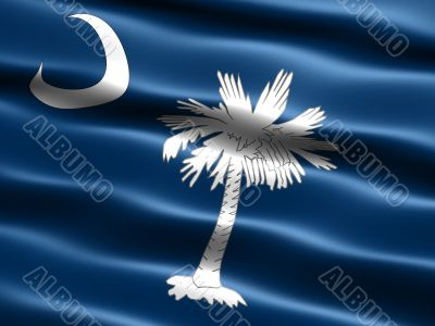 Flag of the state of South Carolina