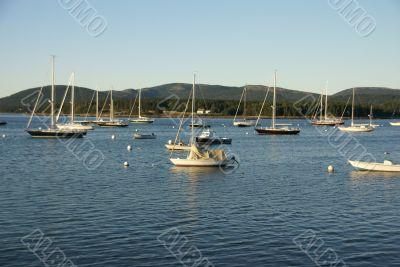 Boats at anchor,in harbor