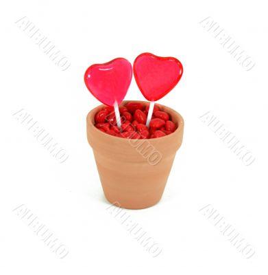 Two Hearts Grow Love