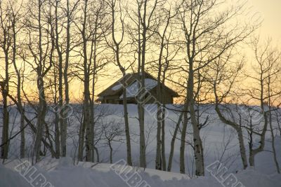Winter sunset: house and bare aspens